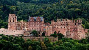 Haartransplantation Heidelberg